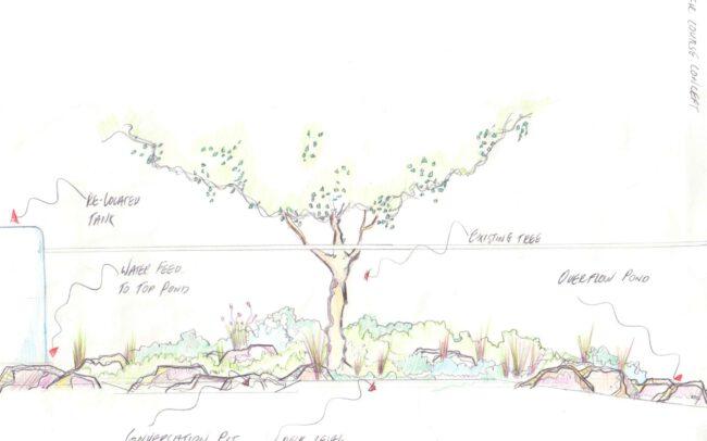 Hand drawn garden landscape design