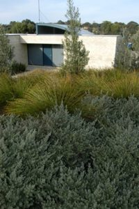 Landscaping Geelong